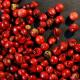 Pimienta Rosa Grano oNENA, 37 g