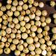Pimienta Verde Grano Liofilizada oNENA, 20 g
