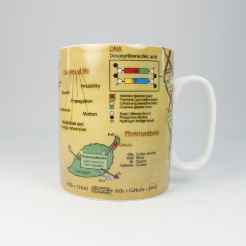 Taza / Mug Könitz Knowledge Biology, 450 ml, porcelana