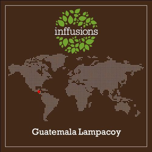 Café de Origen Guatemala Lampacoy, grano, 250 g